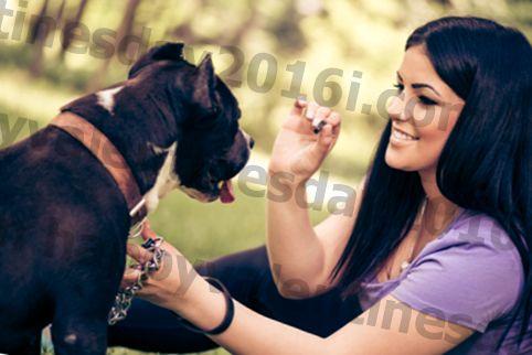 Farkında Olmayacağınız Şey Köpeğinizin Sağlığına Zarar Vermektir