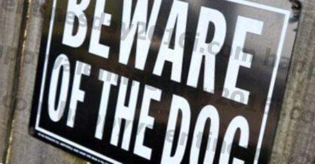गैस कंपनी ने 'डरावने' कुत्ते के कारण यार्ड में प्रवेश करने से इंकार कर दिया